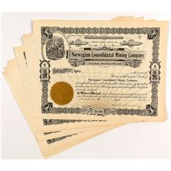Norwegian Consolidated Mining Company Stock Certificates (11)