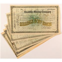 Unadilla Mining Company Stock Certificates (6)