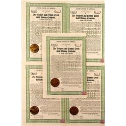 5 The Freeport and Cripple Creek Gold Mining Company Bonds
