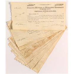 Salina Mining & Milling Stock Certificates (7)