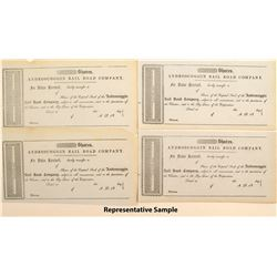 Androscoggin Rail Road Company Stock Certificates (55)
