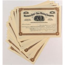 Montana Gold & Gem Mining Stock Certificates (20)