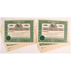 Montana Yerington Copper Company Stock Certificates (31)