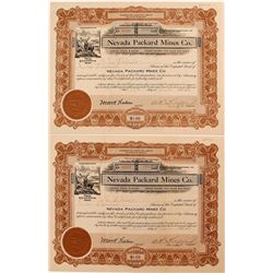 Nevada Packard Mines Co. Stock Pair
