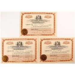 Piute Valley Gold Mining, Milling and Developing Company Stock Certificates