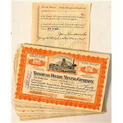 56 Tonopah Divide Mining Company Stock Certificates