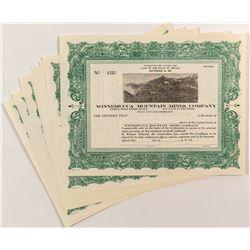 Winnemucca Mountain Mines Company Stock Certificates (12)
