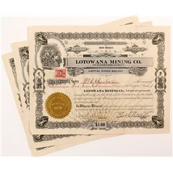 Lotowana Mining Co. Stock Certificate Trio