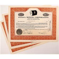 Petaca Mining Corporation Stock Certificate