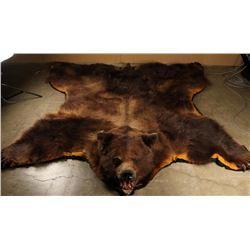 Large Bear Rug