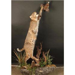 Full Mount Bobcat