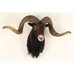Ram Shoulder Mount