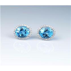 Dazzling Ladies Earrings