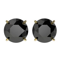 3.18 CTW Fancy Black VS Diamond Solitaire Stud Earrings 10K Yellow Gold - REF-80T9X - 36699