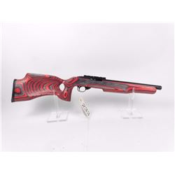 Amazing Ruger Modified 10/22