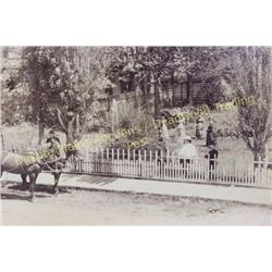 Original large black and white photo of Deadwood residence showing family members and carriages in f
