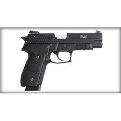 SIG SAUER P229 22 LR