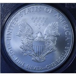 United States Silver American Eagle, 2010