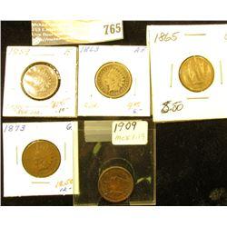 1859 Fine, 1863 AF, 1865 G, 1873 G, & 1909 Fine U.S. Indian Head Cents.