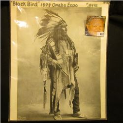 "8 1/2"" x 11 1/2"" Black & White Studio Photo Copyright 1899 of Indian Chief Blackbird, taken while he"