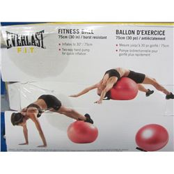 New Everlast fitness ball