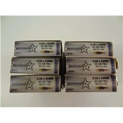 120 ROUNDS INDEPENDENCE 5.56X45MM 55 GRAIN FMJ