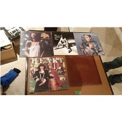 Lot Of Rock And Roll Records (5)