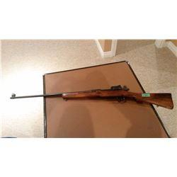 303 RE Gun