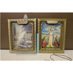 Pair of Framed Pieces