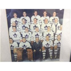 Toronto Maple Leafs Team Picture 1955