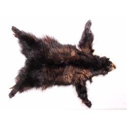Montana Black Bear Tanned Hide