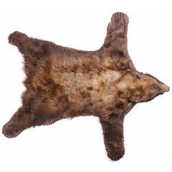 Montana Cinnamon Black Bear Taxidermy Rug