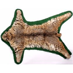 Montana Taxidermy Bobcat Rug