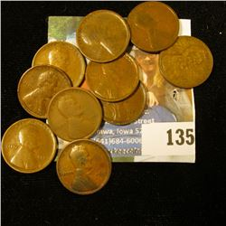 10 1909 WHEAT PENNIES ALL FOR 1 MONEY