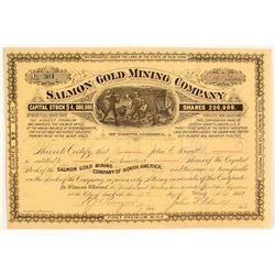 Salmon Mining Co. Stock Certificate, Black Hills, South Dakota, 1882