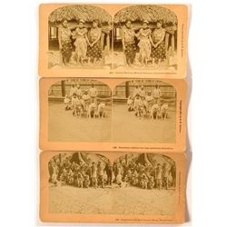 1893 Columbian Exposition Stereoviews of Indigenous People