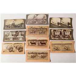 1904 Louisiana Purchase Exposition Stereoview Collection