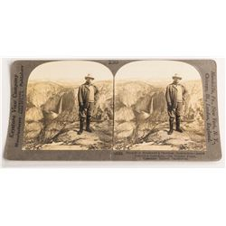 Iconic Western Stereoview of Theodore Roosevelt at Yosemite