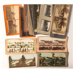Golden Gate Park Stereoview Collection