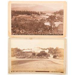 Vintage Photographs of Golden Gate Park