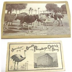 South Pasadena Ostrich Farm Items