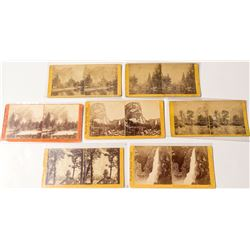 Yosemite Scenery Stereoview Collection: Watkins, 1860s and 1870s