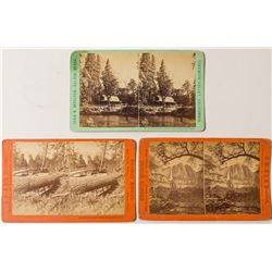 Yosemite Stereoview Collection: Moulton