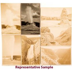 Yellowstone Cabinet Card Group
