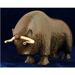 Musk Ox with Ivory Horns