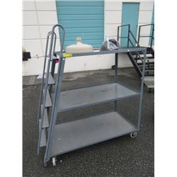 3 Tier Ladder Rolling Cart