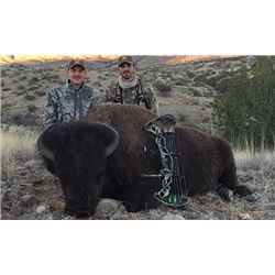 5 Day Cow Buffalo hunt in Sonora Mexico for 1 hunter and  1 non hunter. Hunt can be taken in Februar