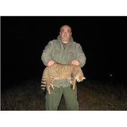 3 Day Small Predators in Serbia plus 2 days touring. Hunt is for 2 or 1 hunter and 1 observer. All f