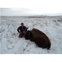 South Dakota Trophy Buffalo Hunt