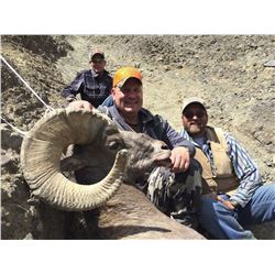 2018 WYOMING GOVERNOR'S ROCKY MOUNTAIN BIGHORN SHEEP LICENSE